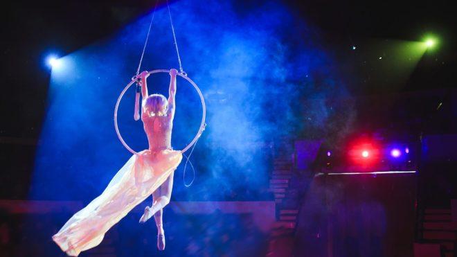 Circus Cool